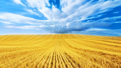 У парламенті України нещодавно зареєстровано проект Закону № 9193 «Про внесення змін до Кодексу законів про працю України щодо Дня Незалежності України».