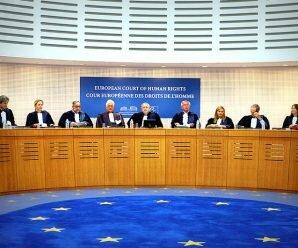 Пул цікавих правоих позицій Європейського суду з прав людини